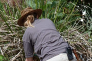 female key gardens gardener with two way radio on belt loop